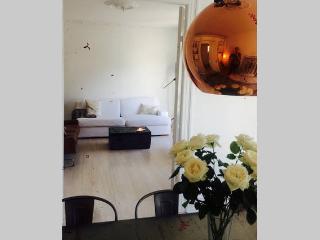 1 bedroom Condo with Dishwasher in Hellerup - Hellerup vacation rentals
