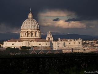 Il giardino del Papa-luxury apartment - Rome vacation rentals