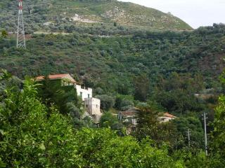 Nice House with Housekeeping Included and Fireplace - Torrenova vacation rentals