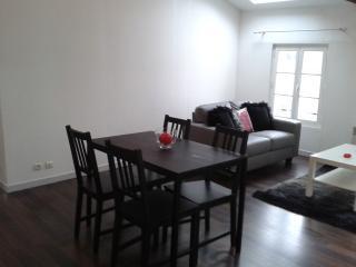 Loft apartment near river, bars, restaurants, pool - Jarnac vacation rentals