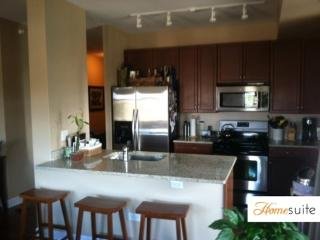MAGNIFICENT 2 BEDROOM 2 BATHROOM FURNISHED APARTMENT - Chicago vacation rentals