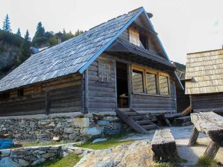 Nice Cabin with Balcony and Fireplace - Fojnica vacation rentals