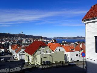 Modern apartment 7 minutes from Bergen centre - Bergen vacation rentals