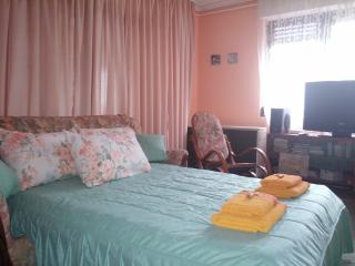 Romantic 1 bedroom Nis Apartment with Internet Access - Nis vacation rentals