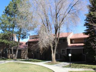 Pines 4007 is a vacation condo centrally located in Pagosa Springs. - Pagosa Springs vacation rentals