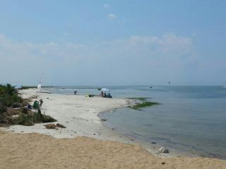Walk to Beach, Sunny Open Home, Marsh View & Birds - Eastham vacation rentals