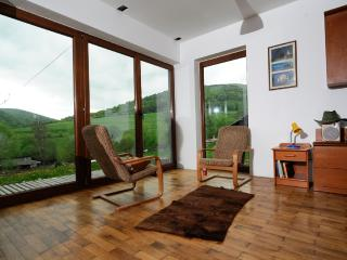 Modern and cozy house next to National Park. - Lutowiska vacation rentals