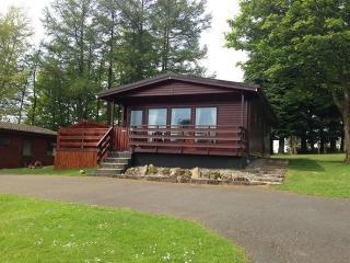 Birch 14 With Hot Tub, Newton Stewart - New Galloway vacation rentals