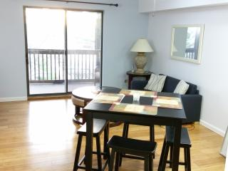Nice Condo with Internet Access and Microwave - Ocean City vacation rentals