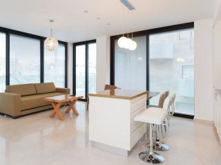 LUXURY APARTMENT - Tel Aviv vacation rentals