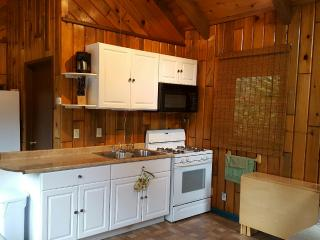 Romantic 1 bedroom Cottage in Lake Almanor with Internet Access - Lake Almanor vacation rentals