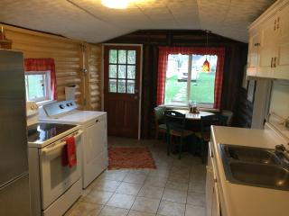 Lakefront getaway, close to Ann Arbor - Whitmore Lake vacation rentals