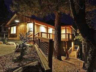 Modern Rustic Big Bear Cabin - Ski, Lake, & Zoo! - City of Big Bear Lake vacation rentals