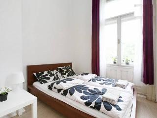 6 rooms flat in the center - Budapest vacation rentals