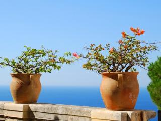 Sunbay House, 300 mt from Beach, Veranda Sea View - Balestrate vacation rentals