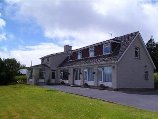 Heather Lodge Family Room - Galway vacation rentals