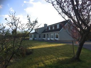 Heather Lodge Single Room - Galway vacation rentals