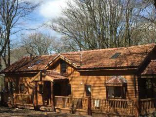 Mockham Down Grand Log Cabin 1 - Bratton Fleming vacation rentals