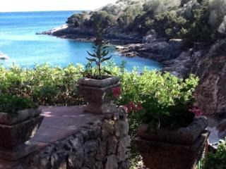 32 gradini dall' Acqua Isola Di Giannutri - Giannutri vacation rentals