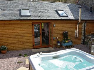 Romantic Converted chapel with Television and DVD Player - Carno vacation rentals