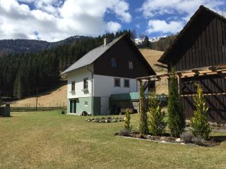 Traditional Austrian farmhouse - Turrach vacation rentals