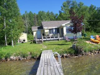 Mullett LakeShore Cottage on the Shores of Mullett - Topinabee vacation rentals
