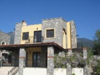 Olive Homes No 3 - Ovacik vacation rentals