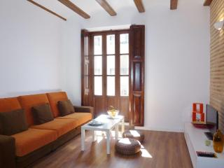 Bright 2 bedroom Xativa Apartment with Internet Access - Xativa vacation rentals