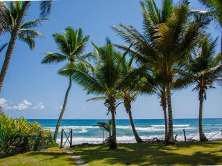 2 bedroom House with Internet Access in Cabarete - Cabarete vacation rentals
