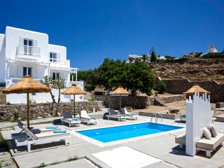 Thalassa Prive Villa -2 persons- - Ornos vacation rentals