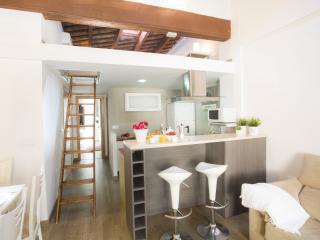 Nice Condo with Internet Access and A/C - Valencia vacation rentals