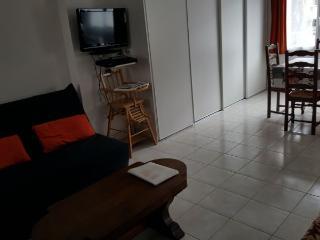 Appartement en Résidence Le Mont Dore 8 à 10 pers - Le Mont-Dore vacation rentals