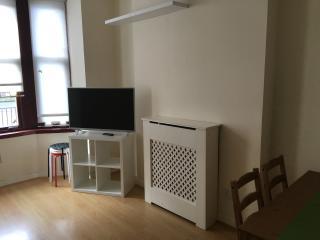 Scotstoun 1-Bedroom Apartment - Glasgow vacation rentals