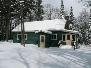 Gathering of the Waters- Pine Cabin - Sayner vacation rentals