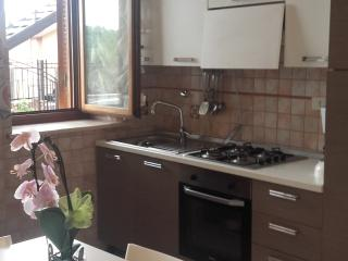 Nice Condo with Internet Access and Long Term Rentals Allowed (over 1 Month) - Villa Adriana vacation rentals