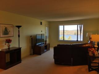 Beautiful & Spacious Luxurious 2BR/2Bath Home - Framingham vacation rentals
