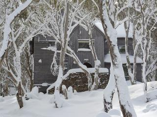 Tyee - Mount Hotham vacation rentals