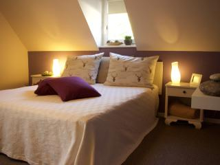 Romantic 1 bedroom Apartment in Langweiler - Langweiler vacation rentals