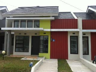 The Great Central Location of our Salak Mountain - Bogor vacation rentals