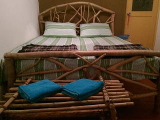 Beautiful 2 bedroom Guest house in Ella with Internet Access - Ella vacation rentals