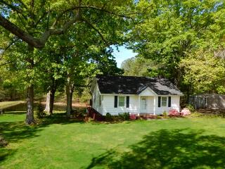 Furnished Serene Cottage, Overlooking Small Pond - Appomattox vacation rentals