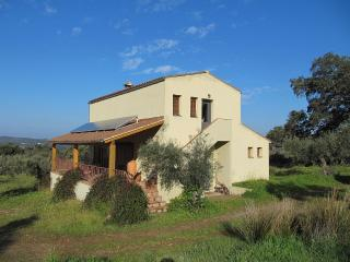 House with private pool in gorgeous olive grove - Montanchez vacation rentals