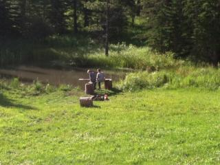 5 Bedroom Cabin with pond and babbling creek - Deadwood vacation rentals