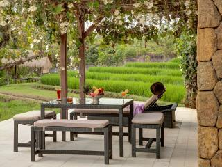 Villa Puri Bawana - an elite haven - Canggu vacation rentals