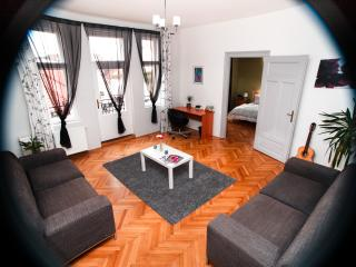 Nice Condo with Balcony and Central Heating - Brno vacation rentals