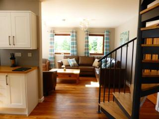 The perfect place to escape:Lord Galloway - 102797 - Newton Stewart vacation rentals