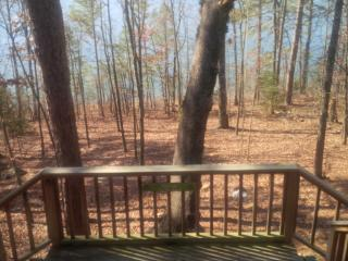 Lakefront Cabin with swimming, fishing and boating - Tumbling Shoals vacation rentals