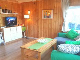Golden circle - Summerhouse Laugarvatn, - Laugarvatn vacation rentals