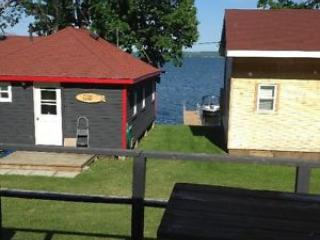Beautiful 2 bedroom Keene Cottage with Grill - Keene vacation rentals
