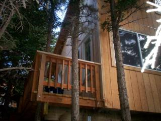 Alaska Cannabis Friendly Tree House - Anchorage vacation rentals